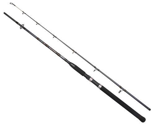 Prut-2380210-SALTIX-BOAT-210-150gr-2D