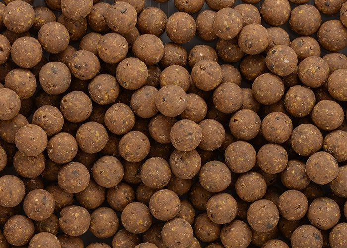 BOILIES-STRATEGY-SAGA-SQUID-ADDICT-chobotnice-20mm-1kg-1