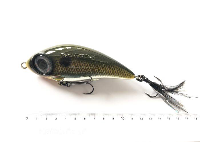 Wobler-48671600-Shad